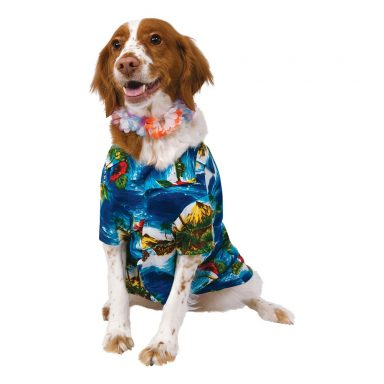 Hawaiidragt Hundekostume - Small